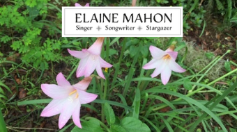Elaine Mahon's Summer 2019 Newsletter